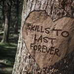 Picture of a tree with words 'skills to last forever'